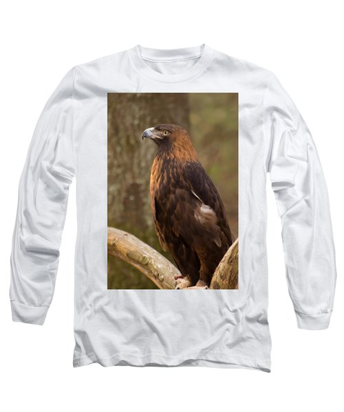 Golden Eagle Resting On A Branch Long Sleeve T-Shirt by Chris Flees