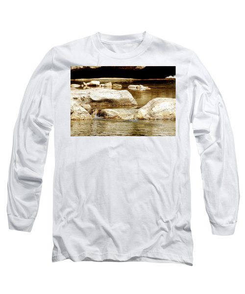 Golden Stream Long Sleeve T-Shirt by Nancy Landry