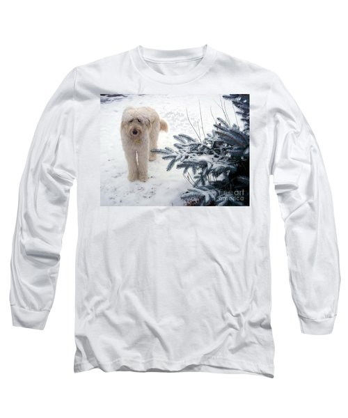 Goldendoodle Long Sleeve T-Shirt by Andrea Kollo
