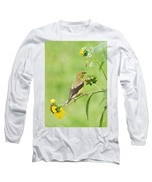 Goldfinch Snackbar Long Sleeve T-Shirt