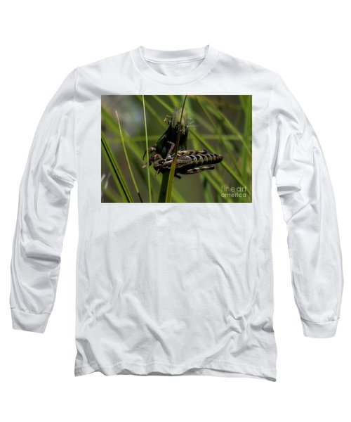 Grasshopper 2 Long Sleeve T-Shirt