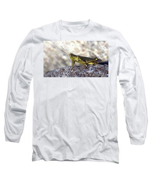 Grasshopper Long Sleeve T-Shirt by Joseph Skompski