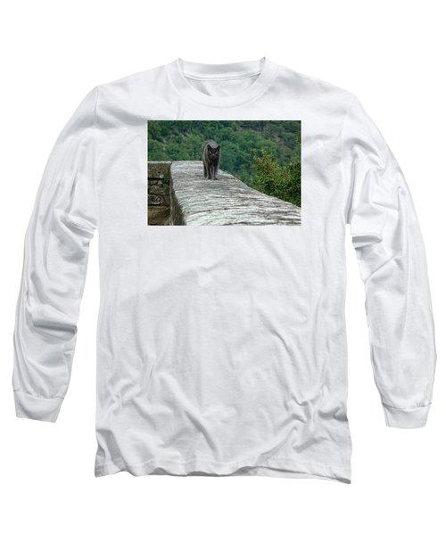 Gray Cat Prowling Long Sleeve T-Shirt