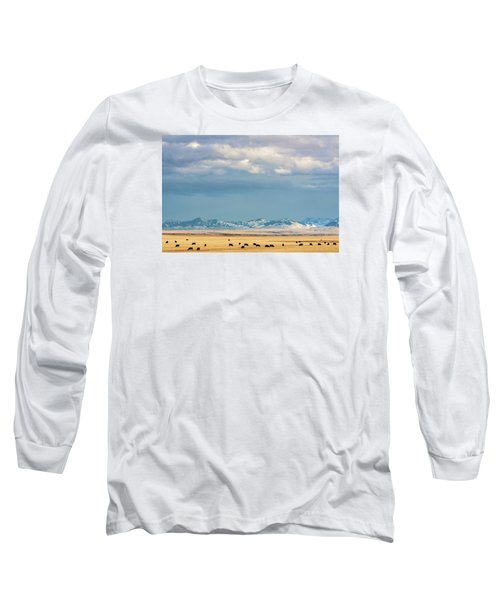 Grazing Near Highwood Long Sleeve T-Shirt