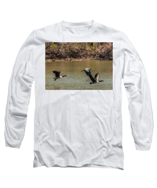 Great Blue Heron And Canada Geese In Flight Long Sleeve T-Shirt by Edward Peterson