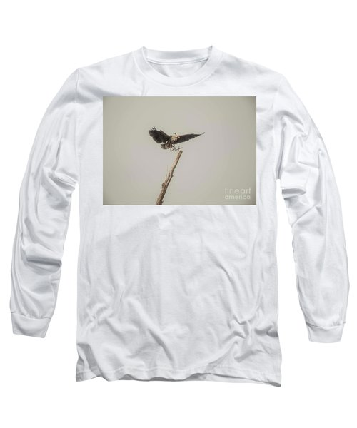 Long Sleeve T-Shirt featuring the photograph Great Blue Heron Landing by David Bearden