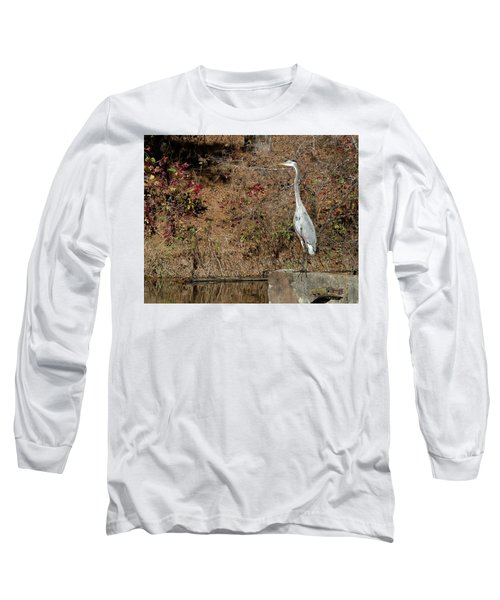 Great Blue Heron Standing Tall Long Sleeve T-Shirt by George Randy Bass