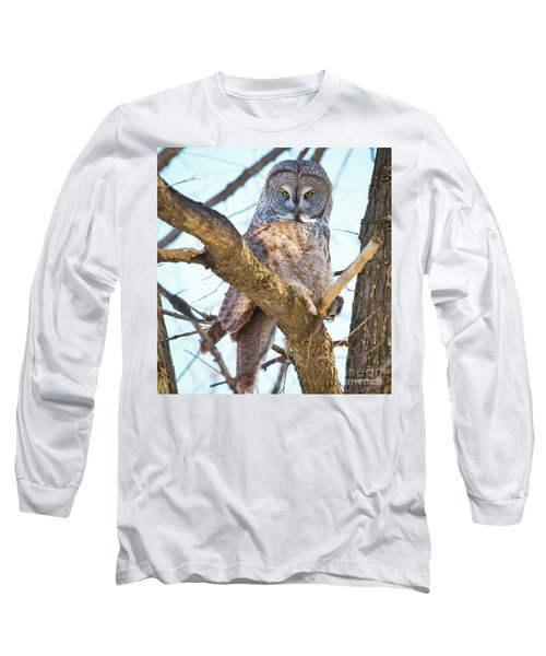 Great Gray Owl Long Sleeve T-Shirt by Ricky L Jones