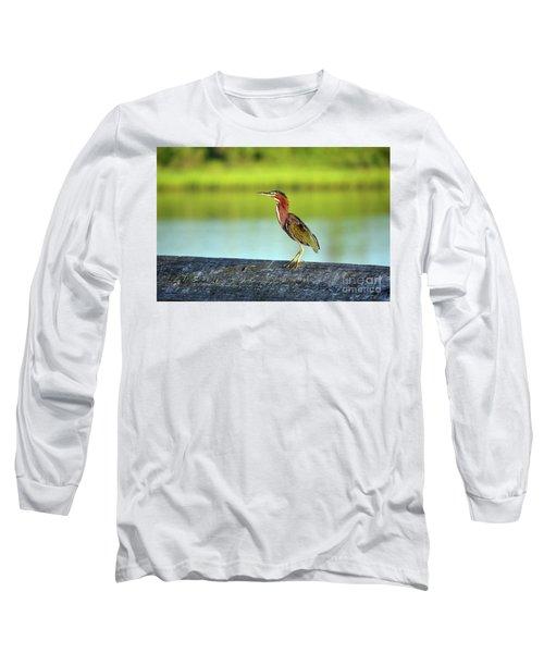 Green Heron Long Sleeve T-Shirt by Eva Kaufman