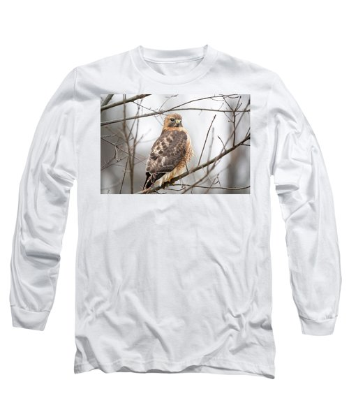 Hals Nicitating Membrane Long Sleeve T-Shirt