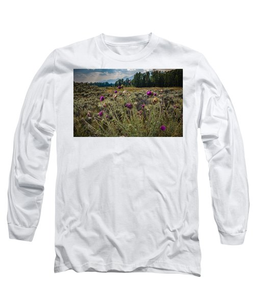 Happier In The Mountains Long Sleeve T-Shirt by Cathy Donohoue