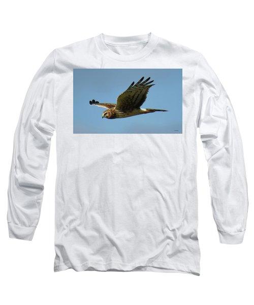 Harrier In Flight Long Sleeve T-Shirt