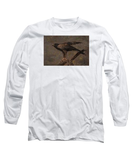 Long Sleeve T-Shirt featuring the photograph Harris's Hawk by Barbara Manis