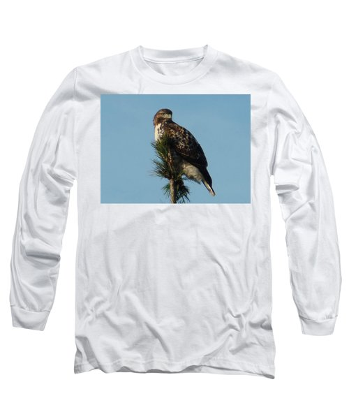 Hawk Atop Tree Long Sleeve T-Shirt by Karen Molenaar Terrell