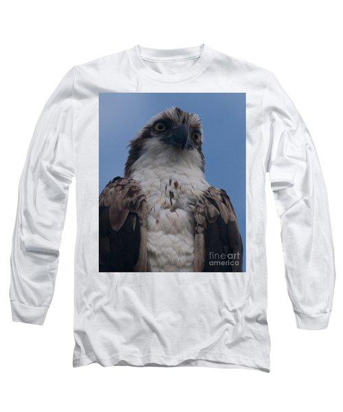 Hawk Stare Long Sleeve T-Shirt