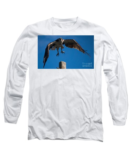 Hawk Taking Off Long Sleeve T-Shirt