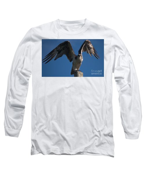 Hawk Wings Long Sleeve T-Shirt