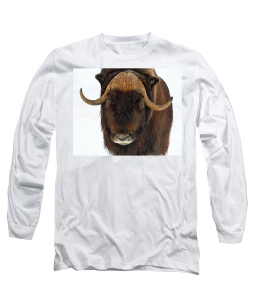 Long Sleeve T-Shirt featuring the photograph Head Butt by Tony Beck