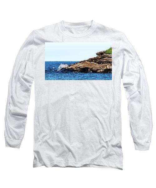 Herring Gull Picnic Long Sleeve T-Shirt