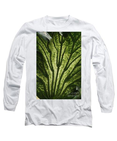 Hibiscus Tiliaceus Variegata 2 Long Sleeve T-Shirt