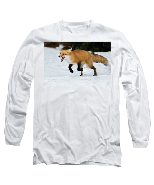 Long Sleeve T-Shirt featuring the photograph High Speed Fox by Mircea Costina Photography