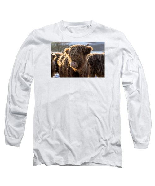 Highland Baby Coo Long Sleeve T-Shirt by Jeremy Lavender Photography