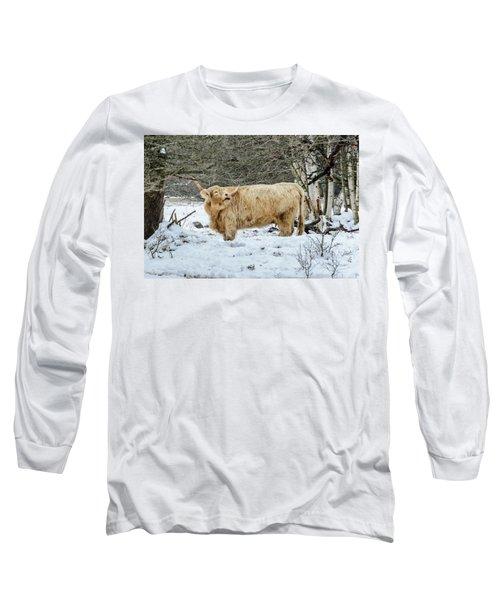 Highlander In Winter Long Sleeve T-Shirt