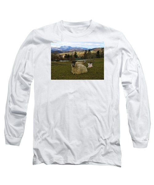 Hill Sheep Long Sleeve T-Shirt by RKAB Works