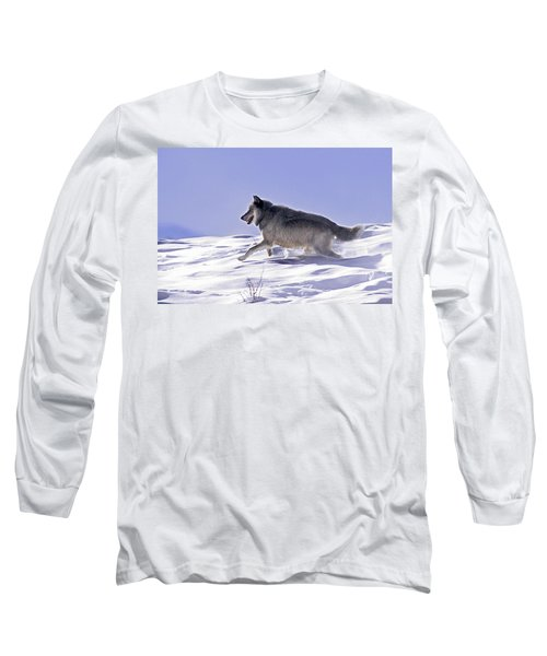 His Majesty Wolf 21m Long Sleeve T-Shirt