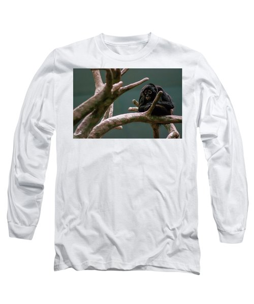 Home On The Limb Long Sleeve T-Shirt