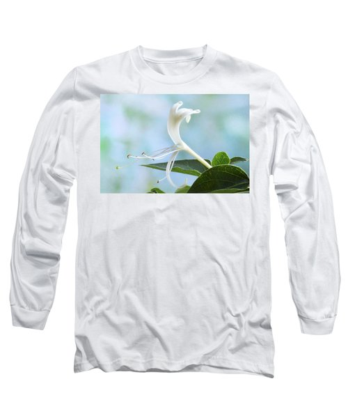 Long Sleeve T-Shirt featuring the photograph Honeysuckle Portrait. by Terence Davis