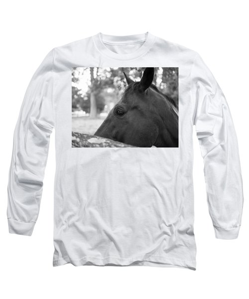 Horse At Fence Long Sleeve T-Shirt