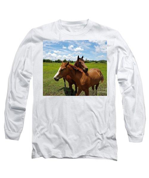 Horse Cuddles Long Sleeve T-Shirt