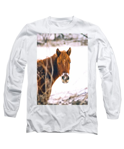 Horse In Winter Long Sleeve T-Shirt by Steve Karol