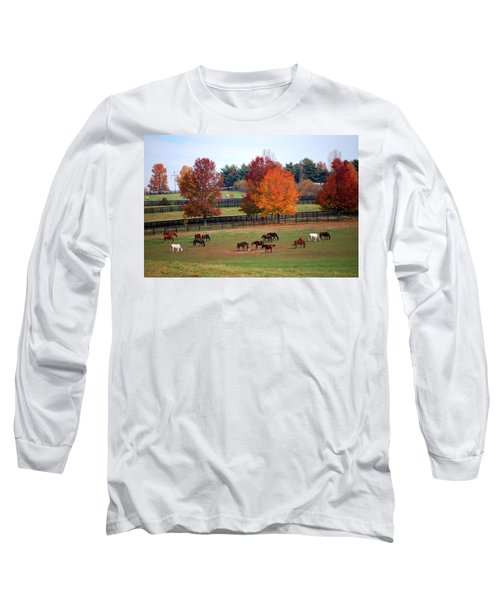 Horses Grazing In The Fall Long Sleeve T-Shirt by Sumoflam Photography