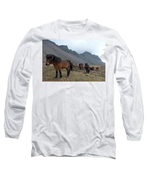 Long Sleeve T-Shirt featuring the photograph Horses Near Vestrahorn Mountain, Iceland by Dubi Roman