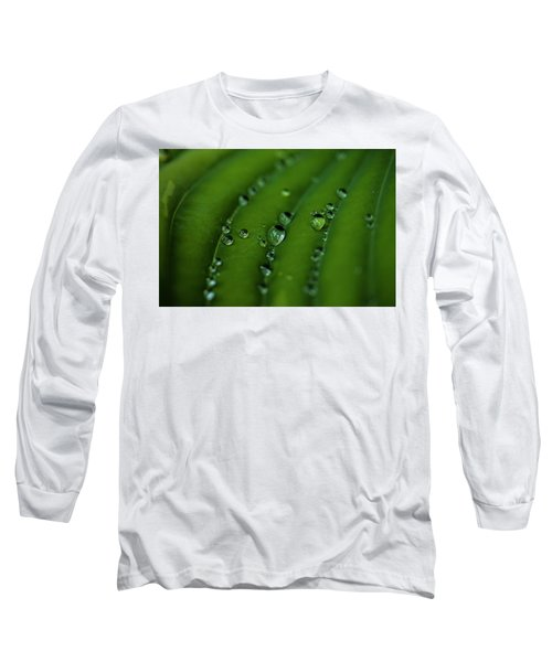 Hostas And Raindrops Long Sleeve T-Shirt