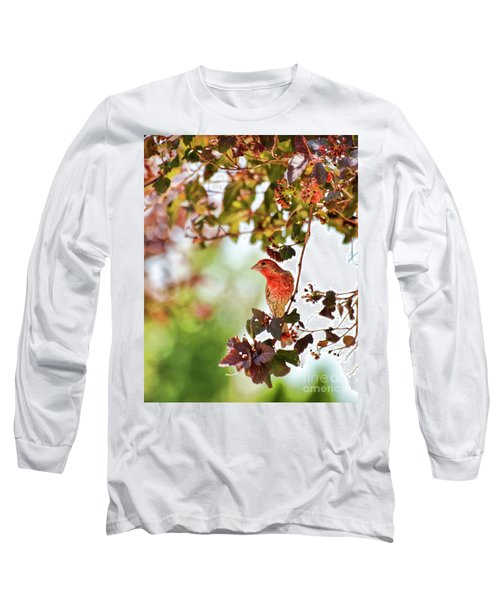Long Sleeve T-Shirt featuring the photograph House Finch Hanging Around by Kerri Farley