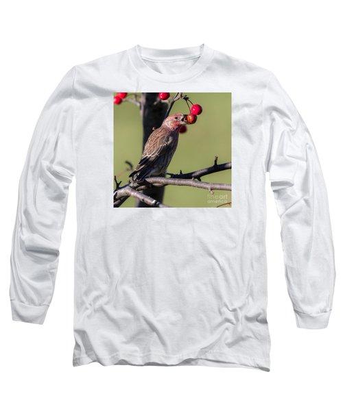 House Finch Vs Crabapple  Long Sleeve T-Shirt by Ricky L Jones