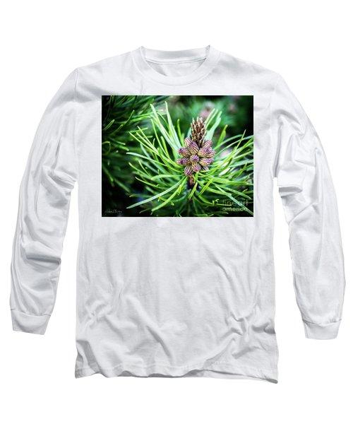Humble Beginnings Long Sleeve T-Shirt
