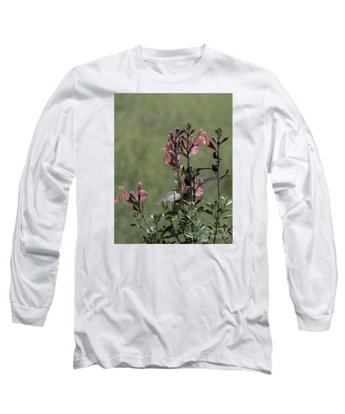 Hummingbird 1 Long Sleeve T-Shirt