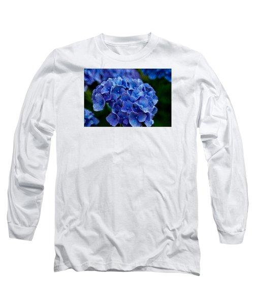Hydrangea  Long Sleeve T-Shirt by Dennis Eckel