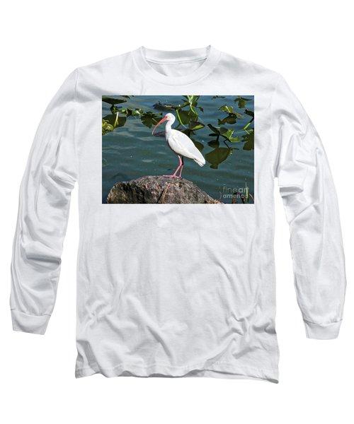 Ibis Rock Long Sleeve T-Shirt by Carol Groenen