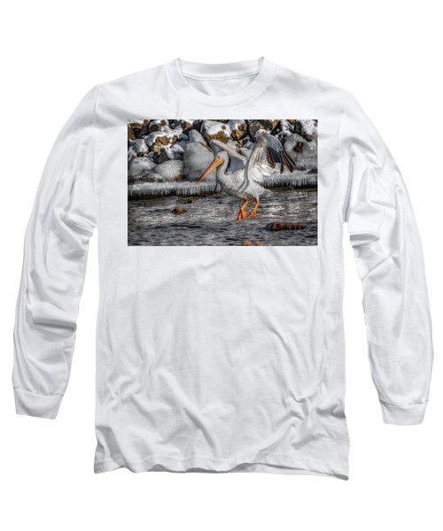 Ice Jump Long Sleeve T-Shirt
