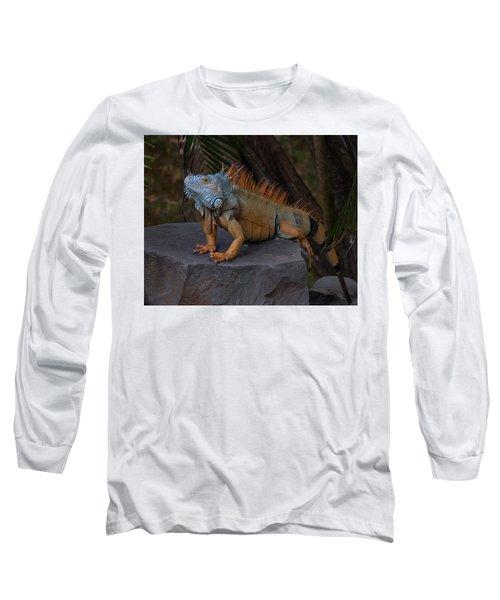 Long Sleeve T-Shirt featuring the photograph Iguana 2 by Jim Walls PhotoArtist
