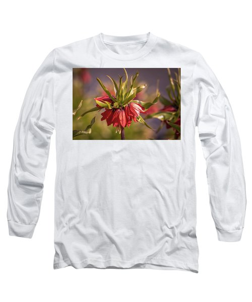 Imperial Crown #g3 Long Sleeve T-Shirt by Leif Sohlman