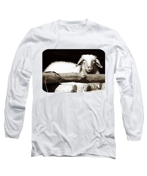 In The Pen Long Sleeve T-Shirt by Ethna Gillespie
