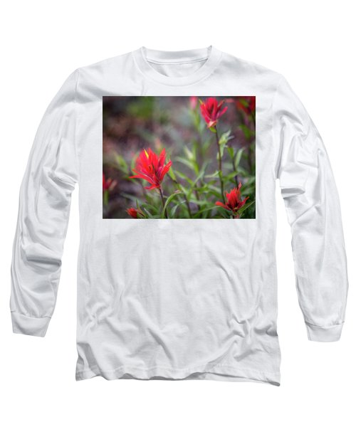 Indian Hawthorne Long Sleeve T-Shirt