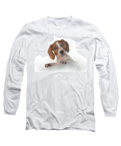 Long Sleeve T-Shirt featuring the photograph Inquisitive Dachshund by David and Carol Kelly