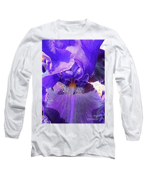 Iris Garden 16 Long Sleeve T-Shirt by Randall Weidner
